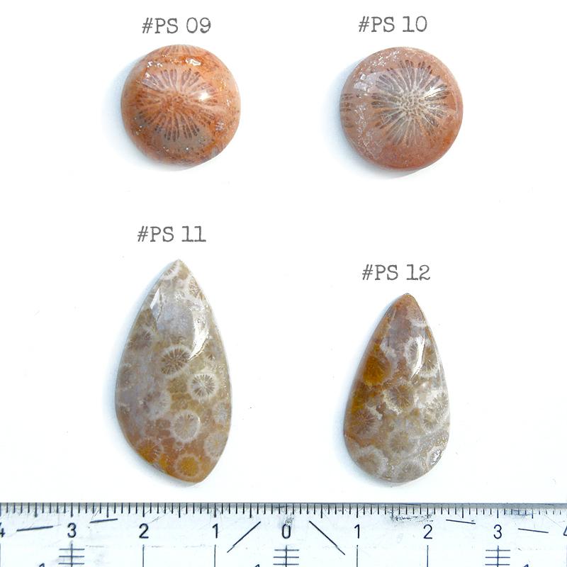 Fossiili koralli, pyöröhiottu kapussi, ympyrä, halkaisija noin 17.5mm, paksuus noin 6.6mm, kuvassa #PS-10, tasainen tausta, kuvio molemmilla puolilla, vain 1 kpl