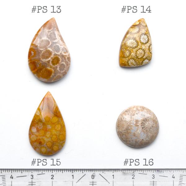 Fossiili koralli, pyöröhiottu kapussi, pisara, noin 32x19x5.7mm, kuvassa #PS-15, tasainen tausta, vain 1 kpl