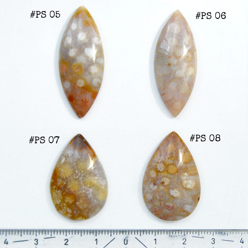 Fossiili koralli, pyöröhiottu kapussi, markiisi, noin 37x15x5.6mm, kuvassa #PS-06, tasainen tausta, vain 1 kpl