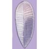 *Tarjous* Muotti F: Lehtimuotti joka muistuttaa mm. temppelipuun ja muiden lehtiä, kestävää muovia, kova, noin 15.5x6.5 cm, OVH 14.99