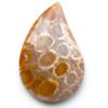 Fossiili koralli, pyöröhiottu kapussi, pisara, noin 32x21x6.2mm, kuvassa #PS-13, tasainen tausta, vain 1 kpl