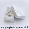 *Tarjous* Korurasia, hopeanvärinen, pehmustettu, 45x30x15mm, TUKKUPAKKAUS 10 KPL