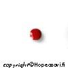 Koralli, kapussi, pyöröhiottu, pyöreä, 4mm, 1 kpl